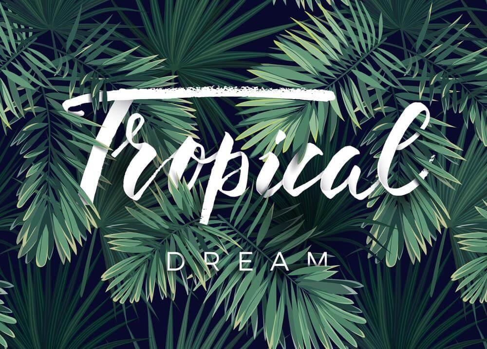 Thiết kế nội thất phong cách Tropical – Đặc trưng của miền nhiệt đới